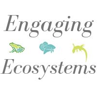 Engaging Ecosystems